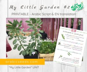 My Little Garden 2 – Video Printable (Script & English translation)