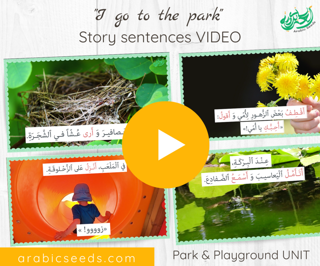 Arabic Park video for kids - Park and playground sentences - Arabic Seeds