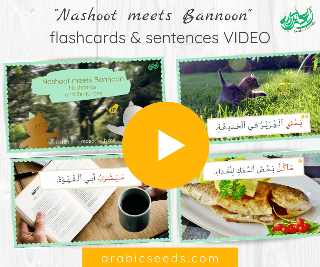 Arabic video for kids Nashoot meets Bannoon flashcards and sentences - Arabic Seeds