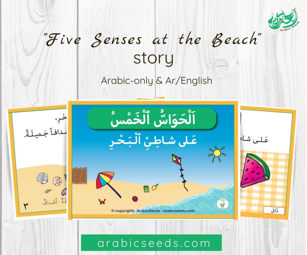 Five Senses at the Beach Arabic Book - Printable Resource for kids and non-native speakers - Arabic Seeds