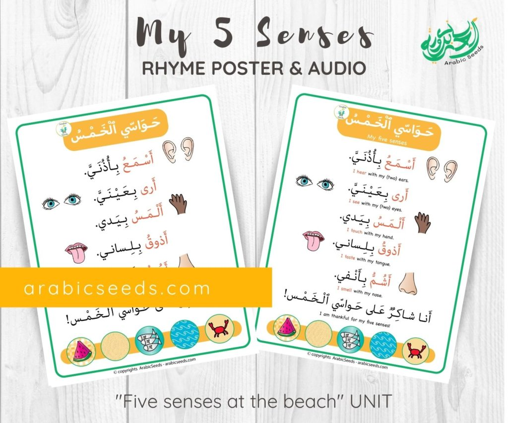 My five senses Arabic Rhyme poster audio printable by Arabic Seeds