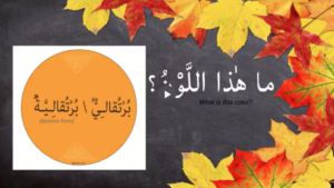 2 Videos: Fall's Colors & Elements Flashcards