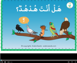 Video: Are you a hoopoe? Bird story read-aloud