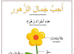 Spring worksheets - arabic Lesson 2 the flowers