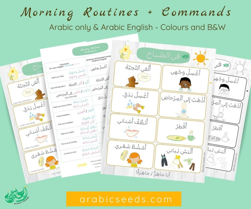 Arabic Morning Routines printable flashcards poster and commands - Arabic only & Arabic English - Arabic Seeds