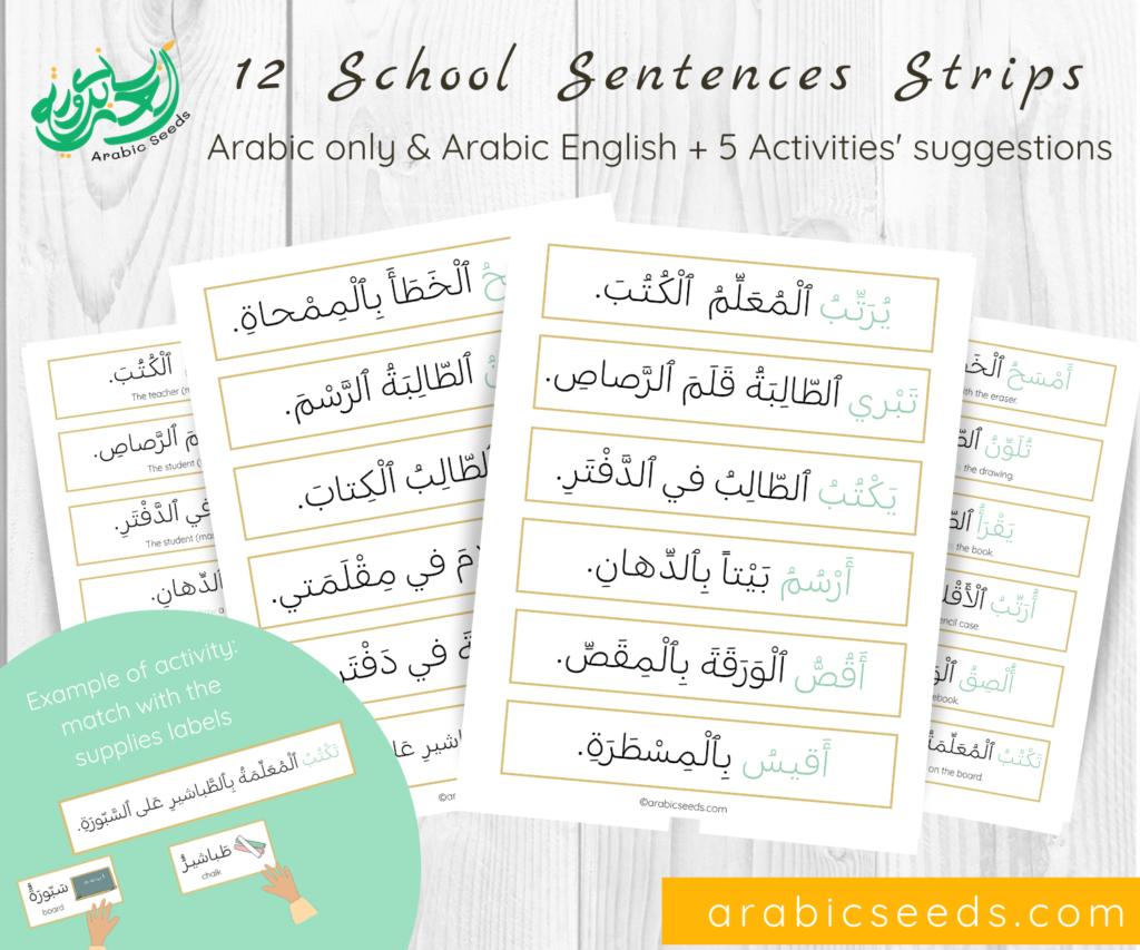 Arabic Seeds School sentences strips printable - Arabic only & Arabic English