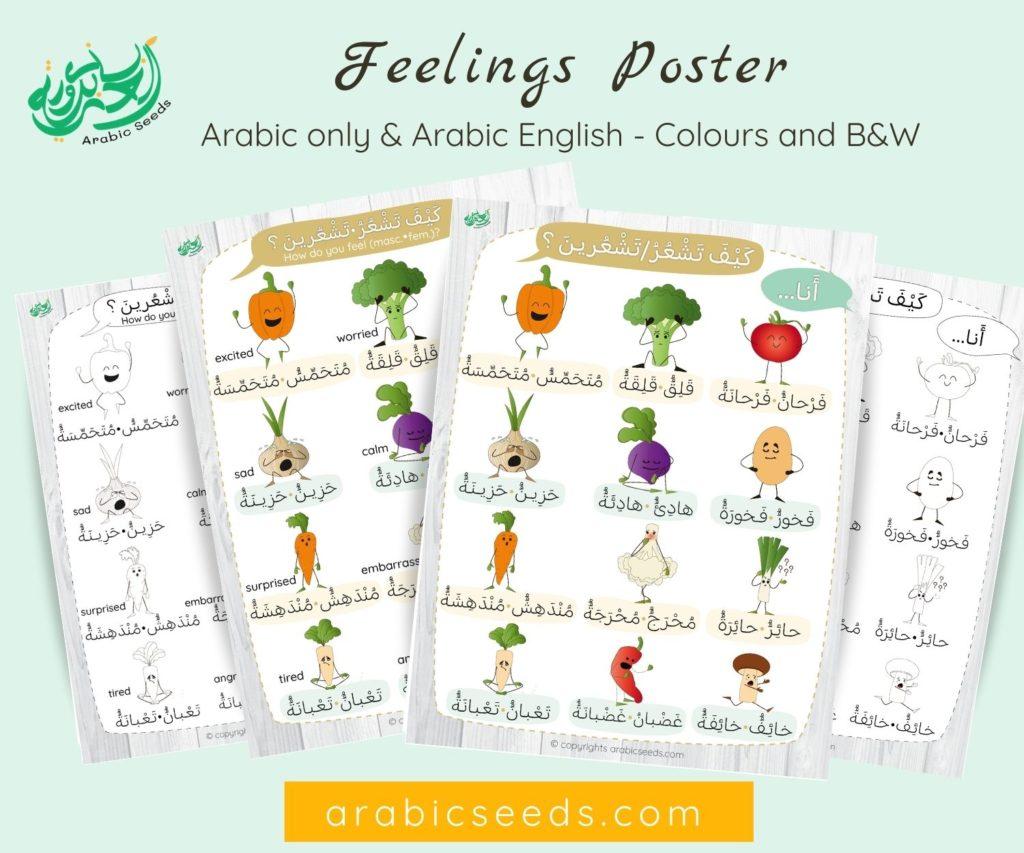 Arabic Feelings Emotions Printable Poster - Arabic Seeds