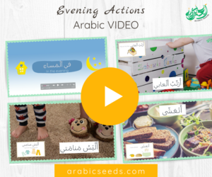 Arabic video evening actions routine - Arabic Seeds