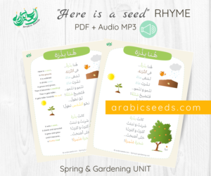 Here is a seed Arabic Rhyme - Arabic printable and audio - Spring and gardening theme - Arabic Seeds