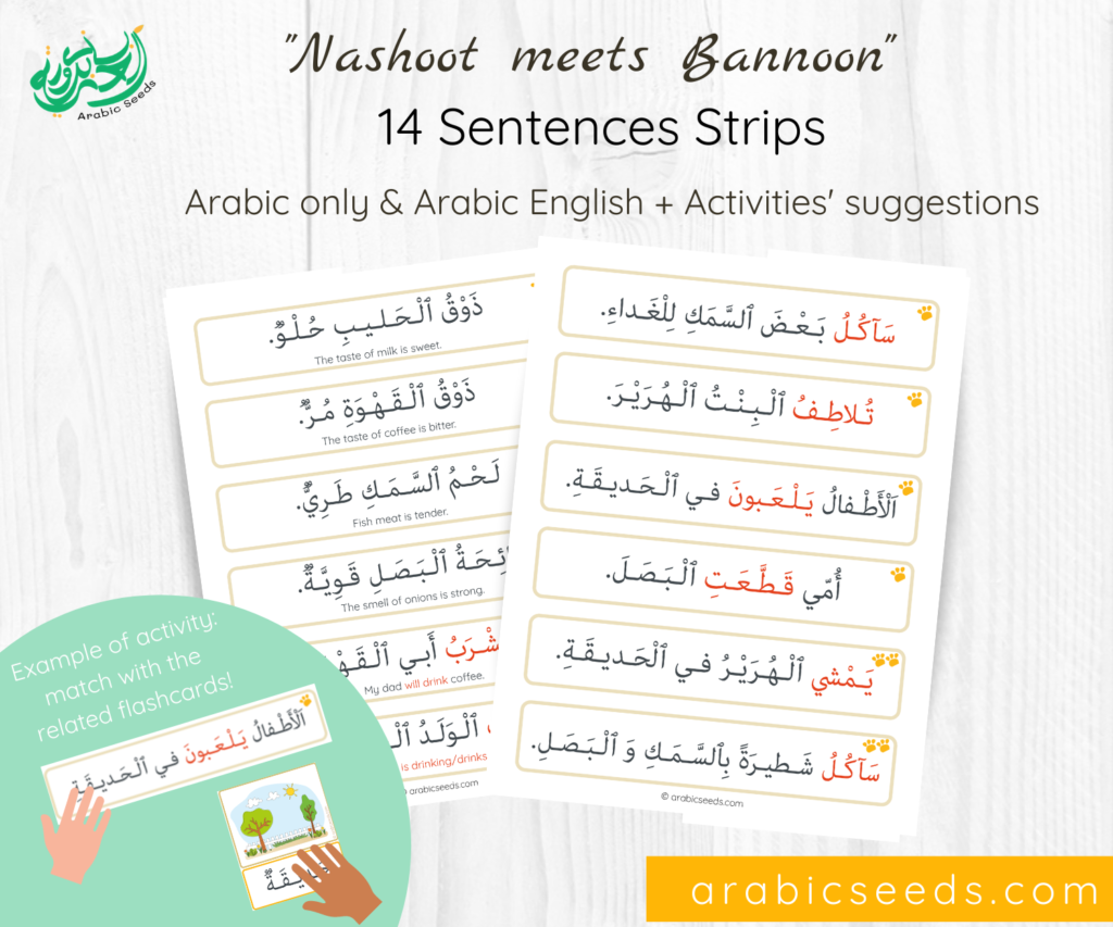 Arabic Sentences Strips - Nashoot meets Bannoon - Arabic Seeds themed units