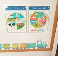 ArabicSeeds wall displays by Salam Homeschooling on Instagram